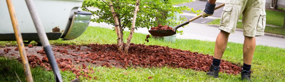 Fort Worth Landscaping